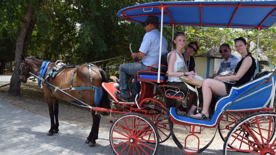 A horse and cart is a comfortable way to tour a hotel complex.