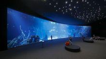 Erst Ende 2017 eröffnet: das Aquarium Poeme del Mar in Las Palmas.
