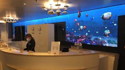 Die Rezeption des Schiffes. Auch hier, wie an anderen Stellen des Schiffes, schmückt ein riesiger Bildschirm eine Wand. Die Fische darauf bewegen sich, so dass man den Eindruck hat, in eine Unterwasserlandschaft zu blicken. Beeindruckend.