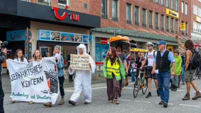 Demonstranten bei der Klima-Demo in Kiel