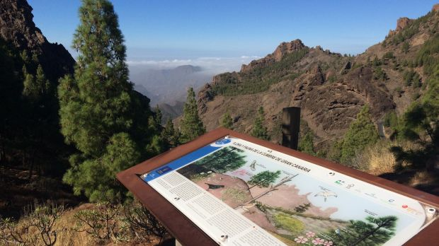 Waiting for tourists: Tourism regions on the Canary Islands like the Roque Nublo area on Gran Canaria are hit by the German travel warning.