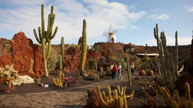 Good news for German travellers to the Canaries as Lanzarote with its Jardin de Cactus: The German government has paved the way to easier travel conditions.